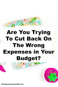 cut big expenses not little ones