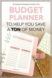 budget planner save money